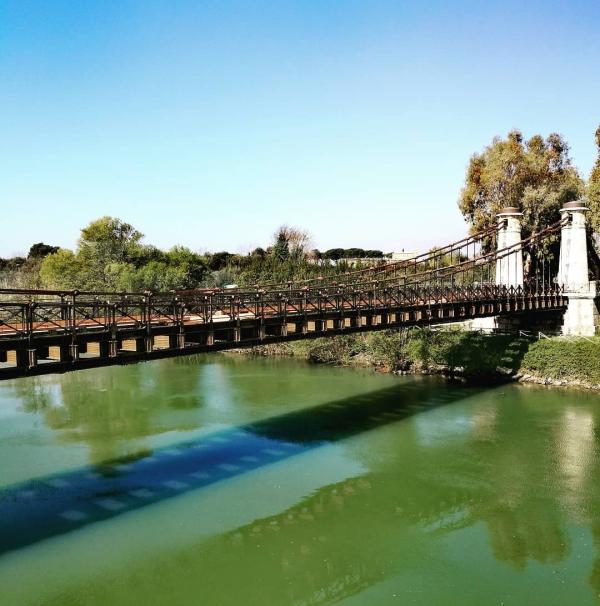 Il ponte Real Ferdinando (detto anche Ferdinandeo) sul Garigliano - Foto di Paolo Pizzo